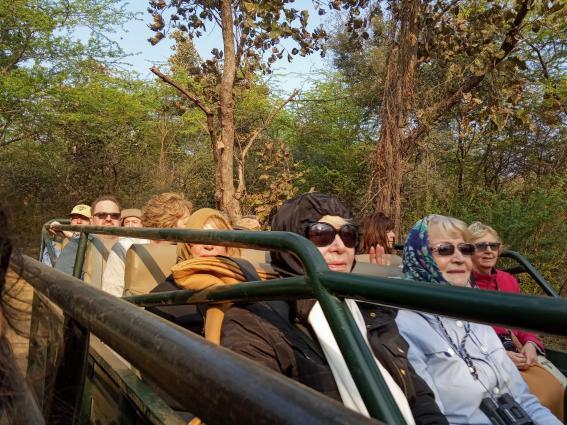 Canter Safari at Ranthambore